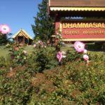 Dhammasala Road Sign